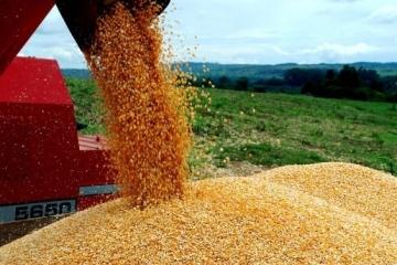 Produção de grãos deve chegar a 49,2 milhões de toneladas em MT