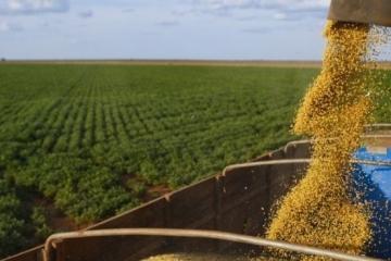 Mato Grosso eleva a safra no Brasil