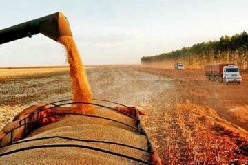 Movimentação de carga de grãos crescerá pela região norte