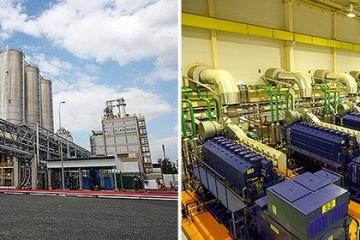 Bolsa de Valores de SP opera em queda liderada por ações da Eletrobras