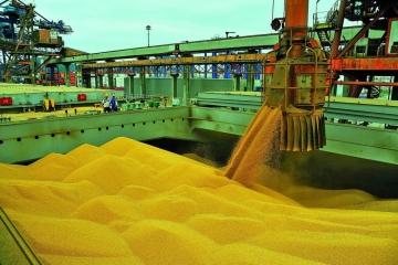 Exportações do agronegócio registram, em maio, US$ 10,9 bilhões, recorde para o mês
